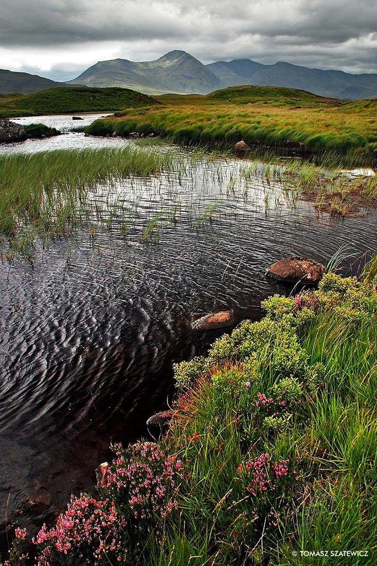 ༺✿༺ Rannoch Moor, Scotland.