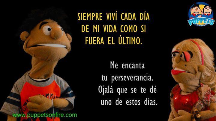 Vive cada día como si fuera el último! #sihoyfueratuultimodia #vivecadadiacomosifueraelultimo #meme #memesdivertidos #chistes #chistes #chistescortos #chistesdivertidos #losmejoreschistes #memes #funnymemes #títeres #titeres http://ift.tt/2mGYExL