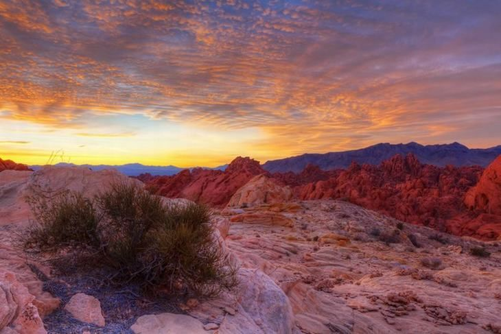 Valley of Fire  As the sun rises over the desert, temperatures shift from about 50°F  to a sweltering 110°F.
