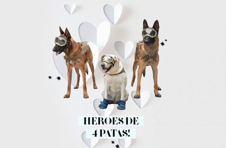 Los memes del sismo que hicieron virales a los héroes mexicanos