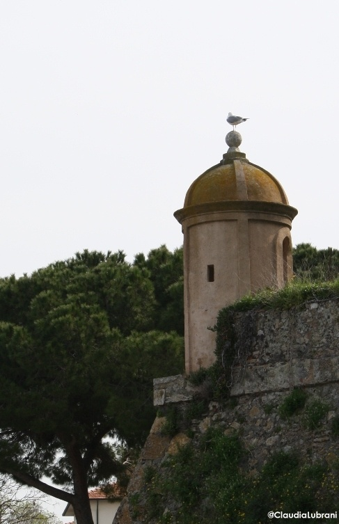 la Guardia, Orbetello Maremma Toscana #maremmans