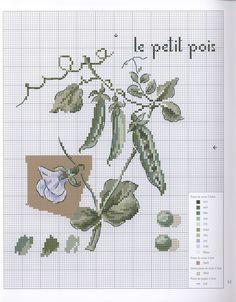 Dans_mon_jardin__34_.jpg