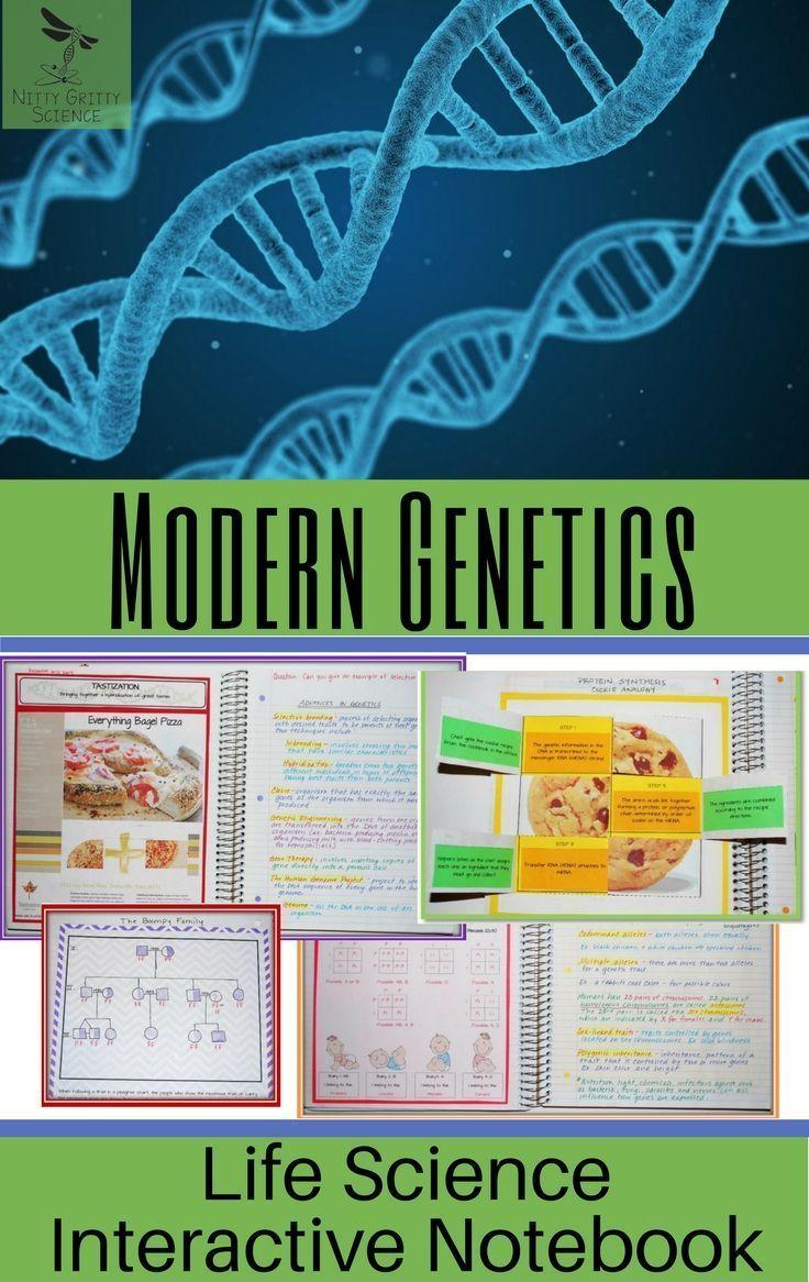 Modern Genetics Life Science Interactive Notebook With Images Interactive Science Notebook Interactive Notebooks Life Science
