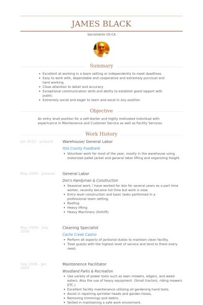 The 25+ best Resume wizard ideas on Pinterest Resume help - example professional summary
