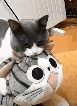 Ich und mein Spielzeug