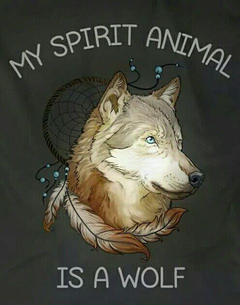 My favourite animal is the Fox but apparently, according to numerous tests, quiz's, etc my spirit animal is a Wolf I don't mind though as they are awesome animals....