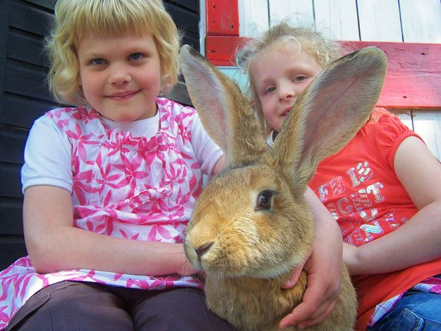"""I'll give you 10 seconds to run away."" 