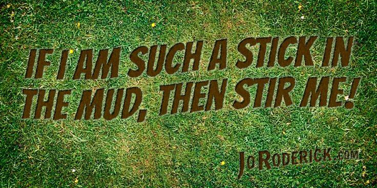 Quote 144: If I am such a stick in the mud, then stir me!  #Quote #Humour #SocialMedia