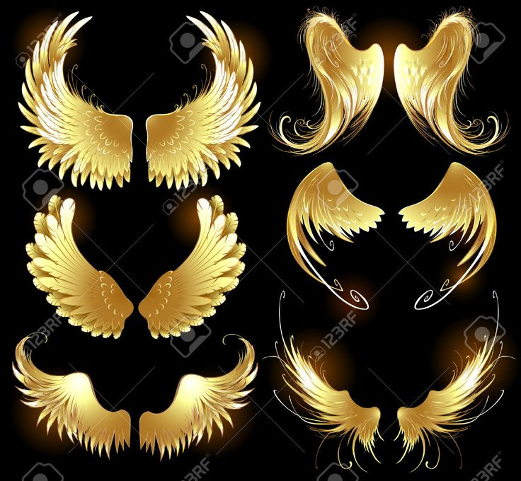 25245624-Arts-painted-gold-angel-wings-on-a-black-background-Stock-Photo.jpg (1300×1202)