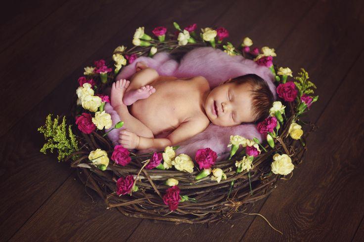 Newborn Photography. Beautiful Memories Photography. Rockhampton Photographer. Newborn nest prop. Newborn photo ideas