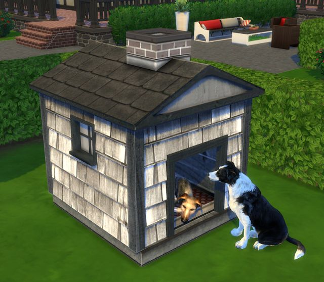 Pet Decor By Biguglyhag With Images Sims 4 Pets