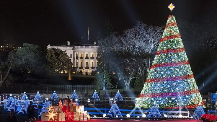 El árbol navideño de la Casa Blanca en Washington DC