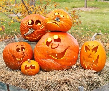 Love these faces...and how pumpkins are arranged...