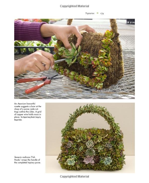 Succulent container gardens design eye catching displays with 350 easy care plants debra lee - Succulent container gardens debra lee baldwin ...