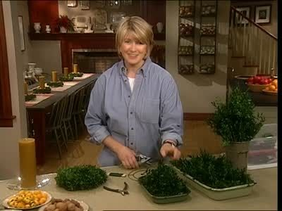 Watch Martha Stewart's How to Make Boxwood Wreath Video. Get more step-by-step instructions and how to's from Martha Stewart.