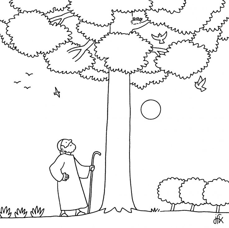 58 best Coloring Bible generic images on Pinterest Bible, Biblia - new coloring page fig tree