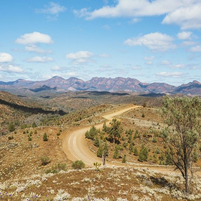 This is the epic view from Razorback Lookout in the Flinders Ranges – definitely worth pulling over to take a photo! The largest mountain range in @southaustralia, the majestic #FlindersRanges sprawl 430 kilometres across three national parks. Photo: @filmenor