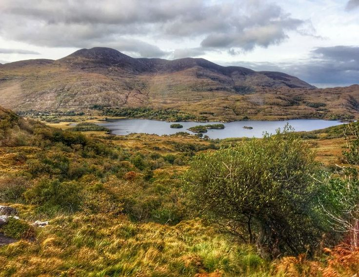 Day 6 in Ireland: Killarney  Technically I'm sharing a photo from yesterday's drive through Killarney National Park part of the Ring of Kerry. I snapped this as we were passing one of the three lakes visible from Ladies View a scenic lookout that Queen Victoria's ladies-in-waiting visited in the mid-1800s. I still can't get over the scenery from my @hidden.ireland.tours excursion. It was so green vast and gorgeous. Today I was sitting in conference sessions listening to speakers meeting with…