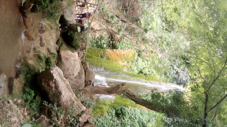 The simplicity of nature! Pure miracle! The waterfalls in Lousios gorge, peloponnese,greece.