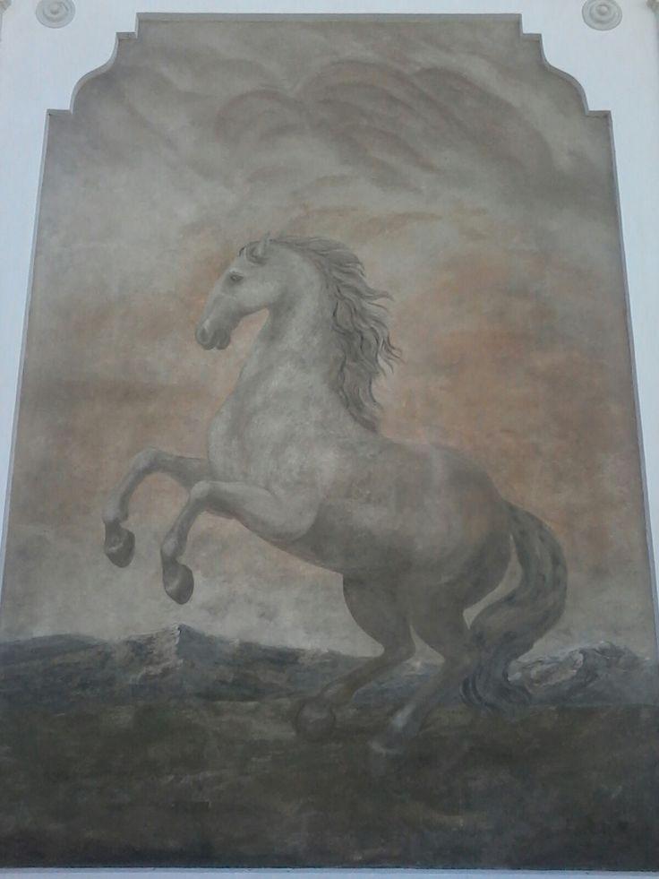 Horse painting in Salzburg II.