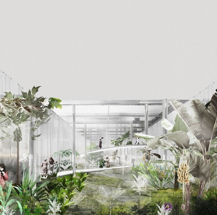 BOGOTA / Tropicarium - LCLA office