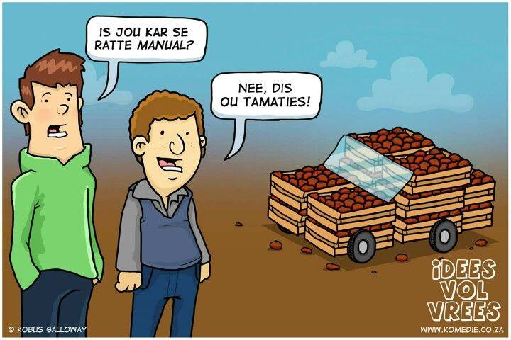 OU-tamaties