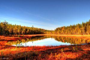 Scandinavian autumn 6 by Floreina-Photography