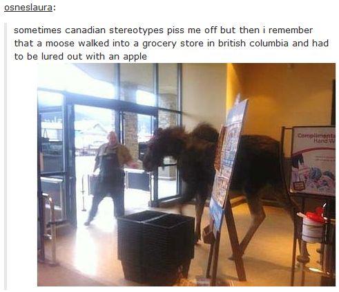 Tumblr on Canada - Imgur
