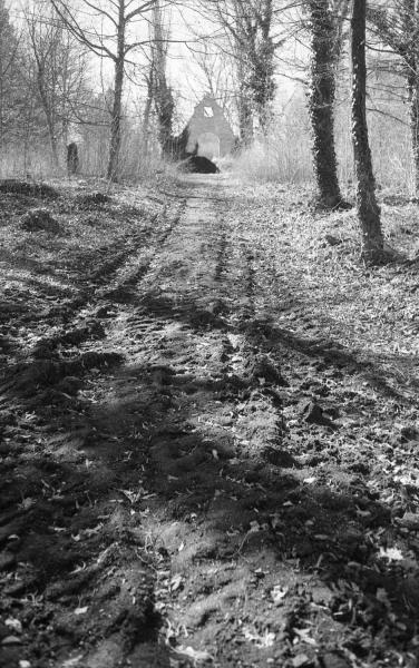 Cesta ke kapličce Hřbitov bláznů