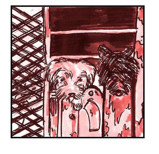 Las fábricas de cachorros o granja de perros son instalaciones de cría de perros cuyo objetivo principal es la obtención de beneficios económicos. En este tipo de instalaciones, no se presta atención al bienestar de los animales que, muy a menudo, viven en condiciones precarias. También se pueden encontrar otras clases de animales domésticos en este tipo de confinamiento e incluso animales que se utilizan como alimento para otros animales