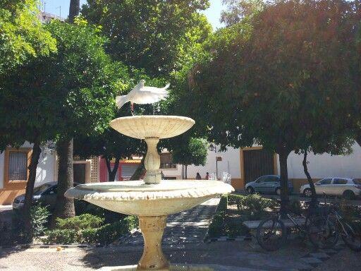 Córdoba,  Plaza Cardenal Toledo