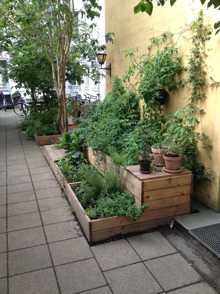 Flere bænke og planter