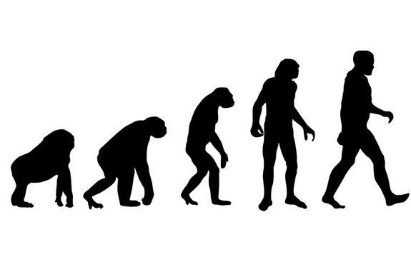 Turns out, we have human evolution to thank for our bad backs, dangerous childbirths, sore feet and wisdom teeth pains.