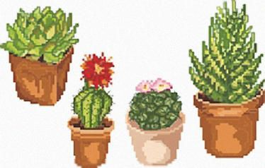 Punto croce piante grasse 2