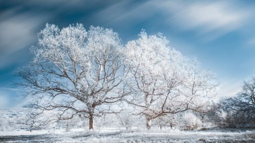 The Twins by ClydonnieCtalope  720nm France IR Infrarouge Landscape beautiful beauty blue clouds infrare infrared ir light long exp
