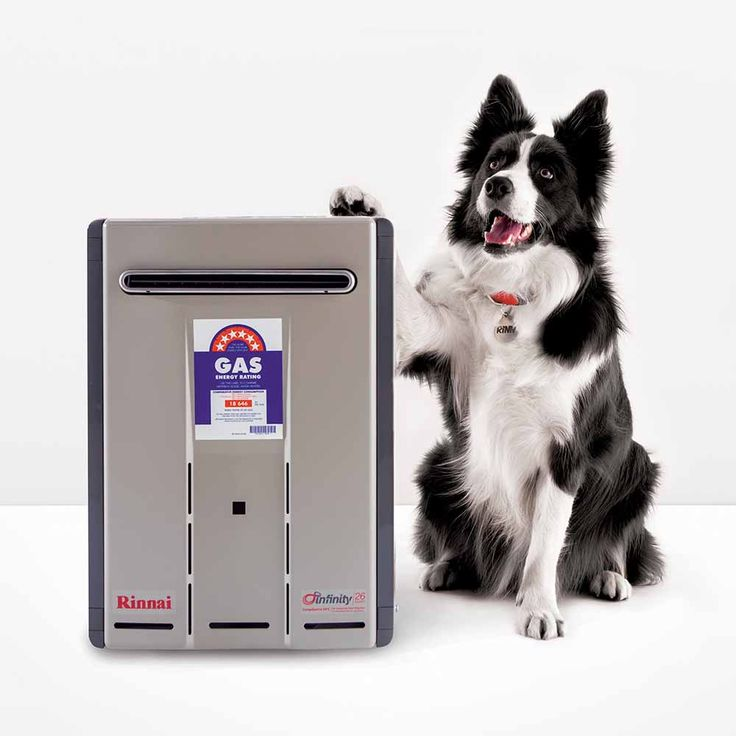 Rinnai Infinity 26 Touch Continuous Flow Hot Water System - Rinnai Austr
