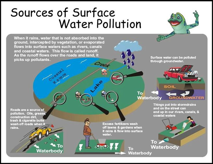 Sources of Surface Water Pollution | Pinterest | Best ...