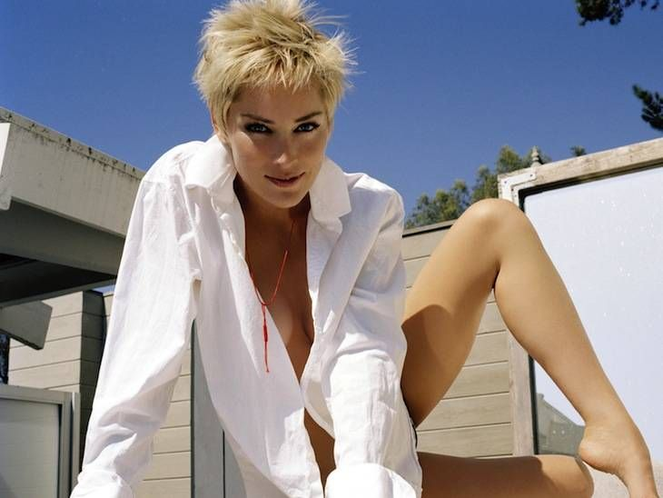 Sharon Stone To Star In Sex Thriller Attachment | www.electroshadow.com