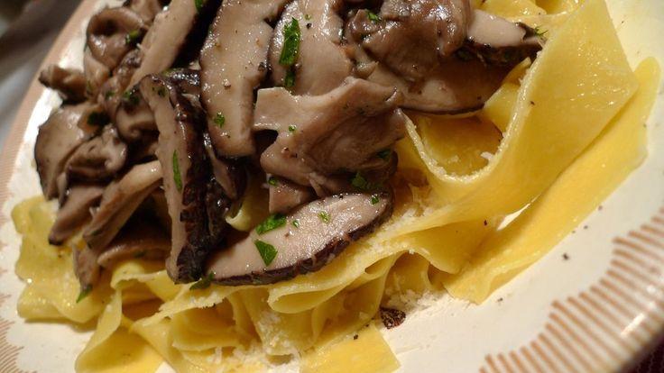 "cibo toscano | Credits: ""Pappardelle with Mushrooms"", Arnold Gatilao"