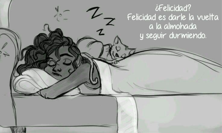 Felicidad es darle la vuelta a la almohada y seguir durmiendo