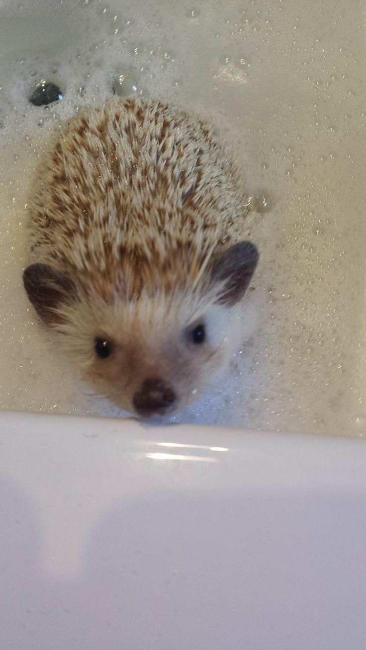 Baño de espuma!!!