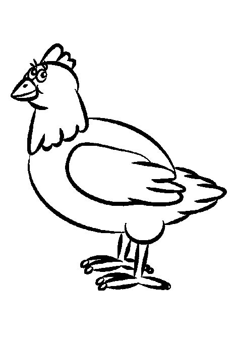 7 best chicken drawings images on pinterest hens for Blue hen chicken coloring page