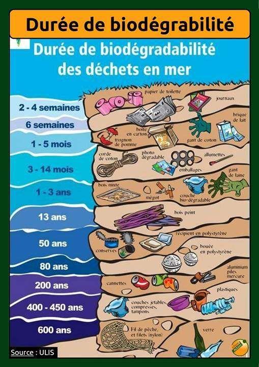 Durée de biodégrabilité des déchets en mer