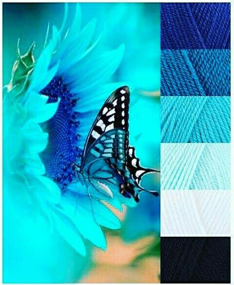 Tonalidad de azules. Inspiración mariposa.