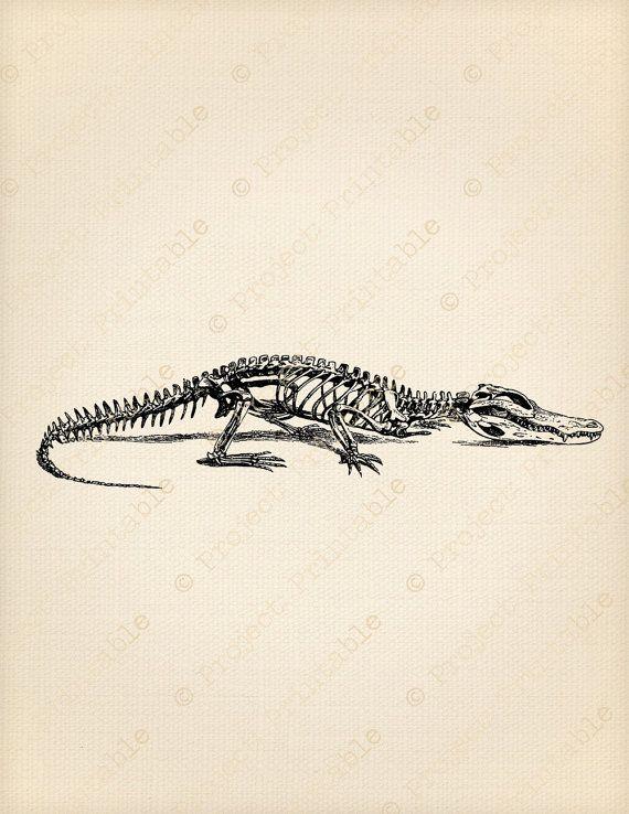 Printable Digital Image Crocodile SKELETON by ProjectPrintable