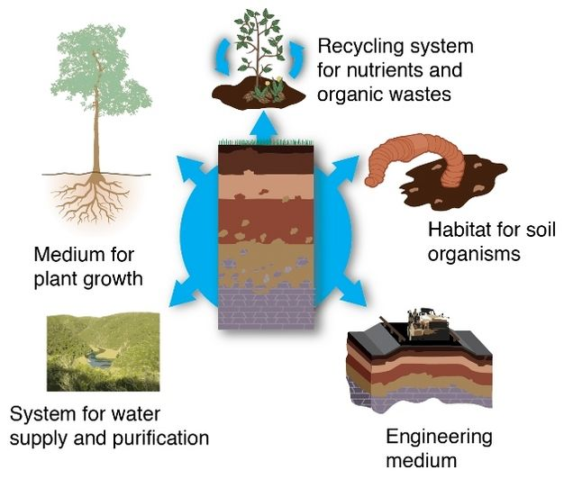 17 best images about soil unit on pinterest different for Soil and its uses