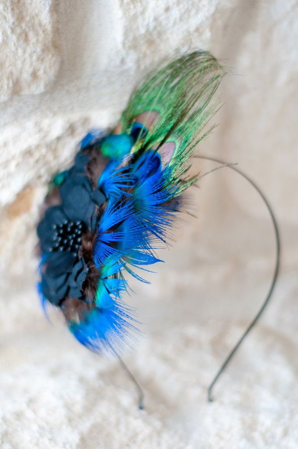 home made peacocks costumes | This entry was posted in DIY and tagged DIY by admin . Bookmark the ...
