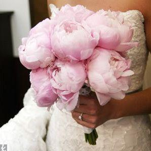 .: Wedding Ideas, Wedding Bouquets, Wedding Flowers, Dream Wedding, Peonies Bouquet, Pink Peonies, Favorite Flower