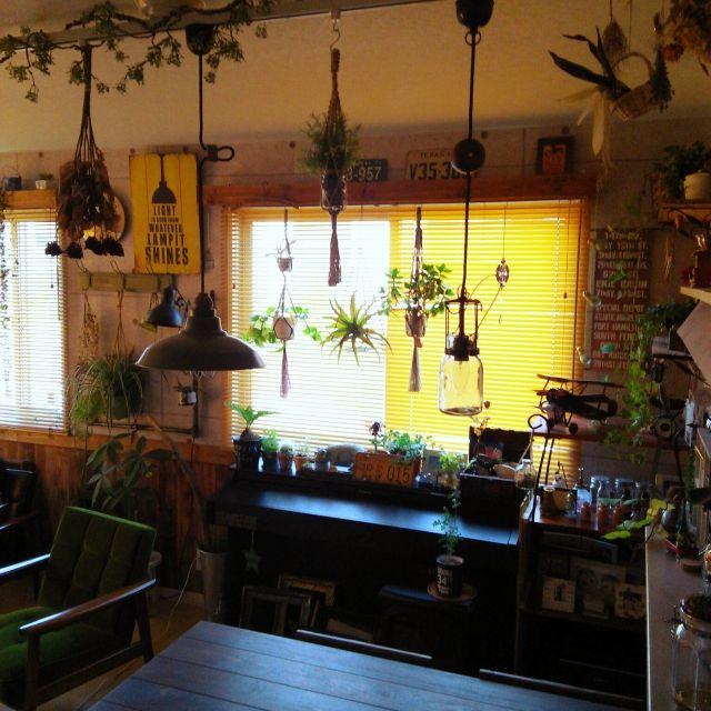 katsumasa0726さんの、玄関/入り口,観葉植物,植物,雑貨,アンティーク,ハンドメイド,DIY,ダイニングテーブル,ブラインド,カフェ風,ドライフラワー,カリモク60,手作りライト,プラントハンガー,かべがみや本舗さん,コンクリート壁紙,のお部屋写真