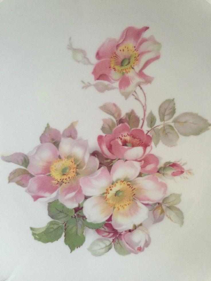 Schumann Arzberg Germany Barvaria Golden Crown E R 1886 Wild Rose Charger Plate   eBay